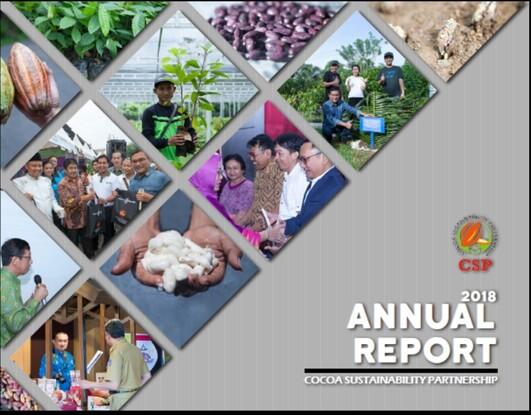 CSP Annual Report 2018