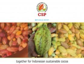 CSP Annual Report 2017