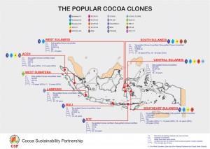 Popular Cocoa Clones Distribution in Indonesia